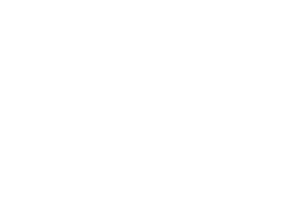 Coiffeur Catwalk Hair Art